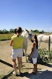 Toeristen die Camargue-paarden ontdekken Stock Afbeeldingen
