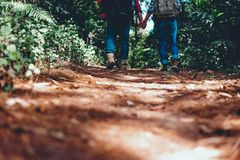 Toeristen die hand in hand lopen Ga het bos zoals een gelukkige han in stock afbeelding
