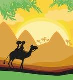 Toeristen die kameel berijden stock illustratie