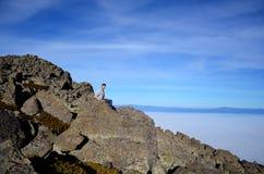 Toeristen die met rugzak van de mening bovenop een berg genieten Royalty-vrije Stock Fotografie