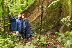 Toeristen die naast een Reusachtige Ceiba-Boom Amazonië zitten Stock Fotografie