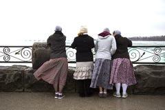 Toeristen die Niagara-dalingen van Canada bekijken Stock Foto's