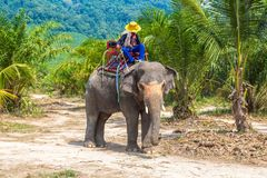 Toeristen die olifant in Thailand berijden royalty-vrije stock fotografie