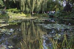 Toeristen en Water Lily Gardens Royalty-vrije Stock Afbeeldingen