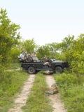 Toeristen in Jeep Looking At Cheetah On-Landweg royalty-vrije stock foto's