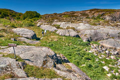 Toeristen op de sleep langs het eiland Hitra van kusttrondelag De Noorse Noordzeekustlijn Stock Afbeelding