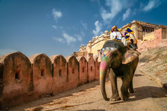 Toeristen op olifant Royalty-vrije Stock Afbeeldingen