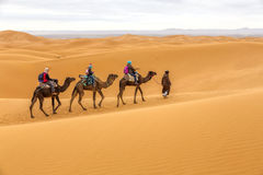 Toeristen op safari, Marokko Stock Foto's