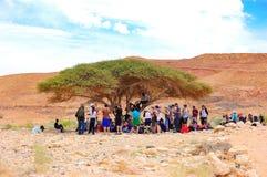 Toeristen in woestijnschaduw, Israël Stock Foto's