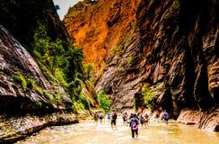 Toeristen in Zion National Park, Utah stock afbeelding