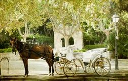 Toeristenblokkenwagen, Palma de Mallorca Stock Afbeelding