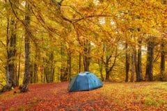 Toeristenkamp in het de herfstbos met rood en geel gebladerte royalty-vrije stock fotografie