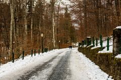 Toeristenpaar op hun manier aan Peles-Kasteel in Sinaia, Roemenië Ijzige weg in een bos stock foto's