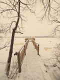 Toeristensleep in de winterbos - oude foto Royalty-vrije Stock Fotografie