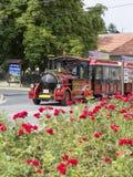 Toeristentrein in de straat in Heviz, Hongarije Royalty-vrije Stock Foto