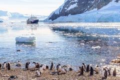 Toeristisch cruiseschip in de antarctische lagune onder ijsbergen en Gentoo-pinguïnenkolonie op de kust van Neco-baai royalty-vrije stock afbeelding