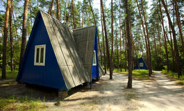 Toeristisch kamp in het bos van de de zomerpijnboom stock afbeeldingen