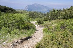 Toeristische sleep Alta Via del Monte Baldo, randmanier in Garda-Bergen stock fotografie