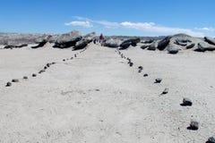 Toeristische weg in woestijn, Valle DE La Luna royalty-vrije stock foto