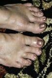 toes стоковое изображение rf