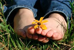 Toes holding flower. Barefoot girl holding a flower between her toes outside in the grass Royalty Free Stock Photo