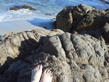 Toes on rock, rocky beach Stock Photos