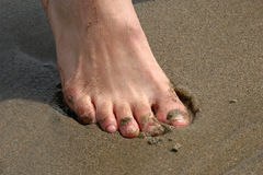 Toes in Sand. Close up of toes digging into the sand royalty free stock photo