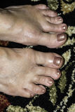 Toes Royalty Free Stock Image