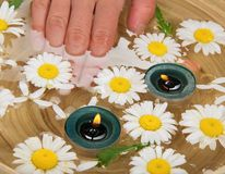 Toes in the water with daisies and candles. Burning candles, heads of camomiles and the female fingers lowered in a dish with water Royalty Free Stock Photography