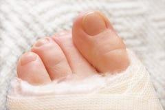 Toes3 Fotografia de Stock Royalty Free