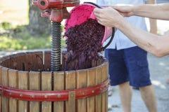 Toevoegend druiven aan een oude houten handwijnpers Stock Afbeelding