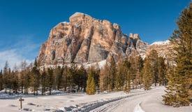 Tofana di Rozes sopra un cielo blu nell'inverno, ` Ampezzo, della cortina D Fotografia Stock
