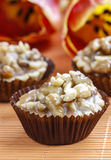 Toffee cupcakes with nuts Stock Images