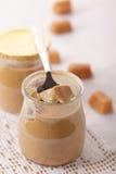 Toffee yogurt Royalty Free Stock Photo