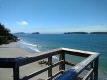 Tofino海滩 库存图片