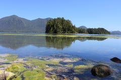 Tofino, BC - giardini botanici Immagini Stock Libere da Diritti