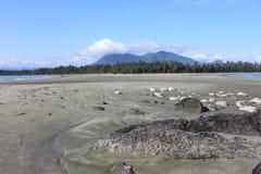 Tofino, BC - la spiaggia di Chesterman Immagine Stock Libera da Diritti
