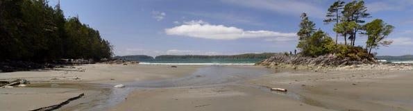 Tofino Beach Royalty Free Stock Image