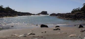 Tofino Beach Stock Images