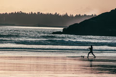 Tofino. Cox beach ocean west coast surf surfer sunset sillouette Stock Photography
