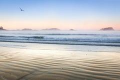 Tofino plaży zachodnie wybrzeże Vancouver wyspa Obrazy Royalty Free