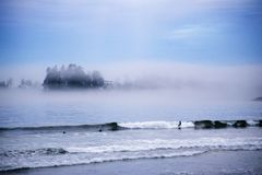 Tofino Surfers. This image was taken in Tofino on Vancouver Island Canada and shows some surfers Royalty Free Stock Photo