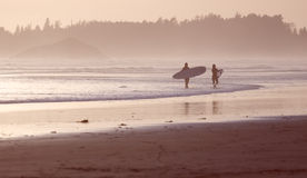 Tofino surfers at sunset. With the waves crashing royalty free stock photos