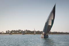 在巴拉岛海岸的单桅三角帆船在Tofo附近的 图库摄影