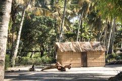 在棕榈树之间的非洲村庄在Tofo 免版税库存照片