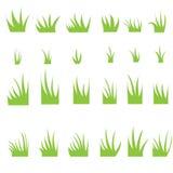 Tofsar av gräs Arkivfoton