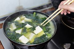 Tofu και λαχανικά που είναι μαγειρεύοντας Στοκ εικόνα με δικαίωμα ελεύθερης χρήσης
