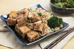 tofu зажаренного риса Стоковые Фотографии RF