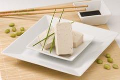 Free Tofu Royalty Free Stock Photos - 13994168
