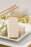 tofu Royaltyfria Foton